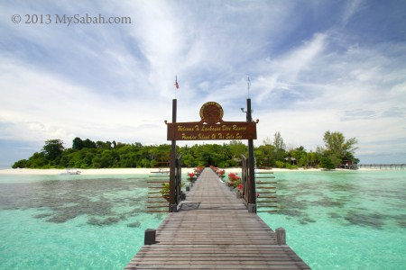 Lankayan Island, Living next to Turtles & Sharks - MySabah.com