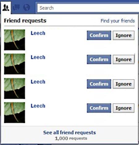 leech on Facebook