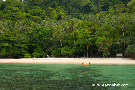 beach of Sepangar Island