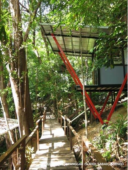 forest chalet on Sepanggar Island