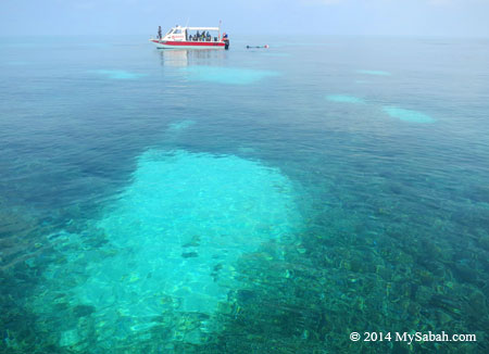 crystal clear sea water of Mengalum