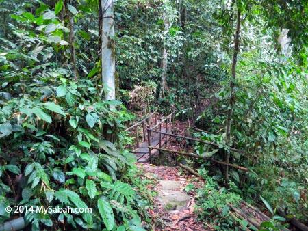 trail to Lupa Masa