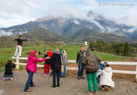 tourists taking photos at Desa Dairy Farm