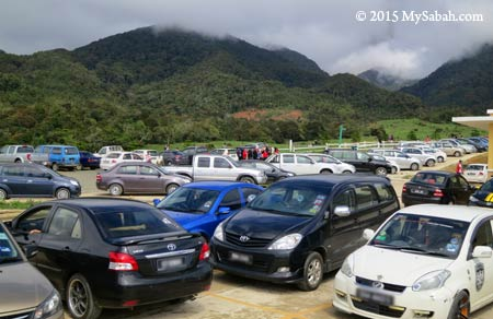 lot of tourist cars at DESA farm