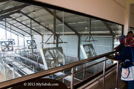 view room for milking