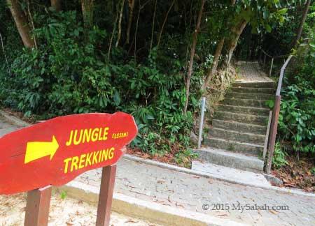 jungle trail and jogging track