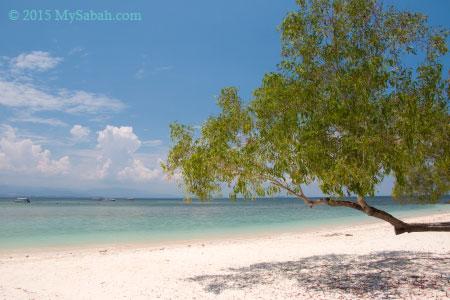 beach of Mamutik Island