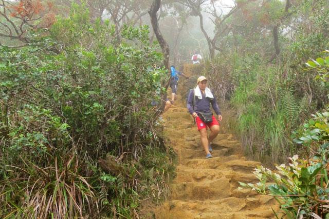 Loop trail of Mt. Kinabalu