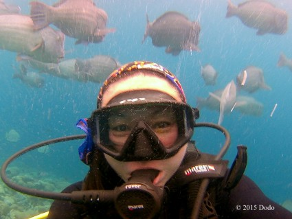 Selfie with Bumphead Parrot Fishes
