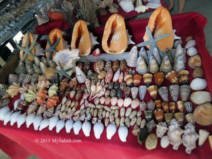 Seashells shop on Mabul