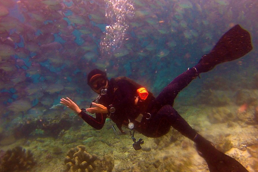 Scuba diving in Sipadan