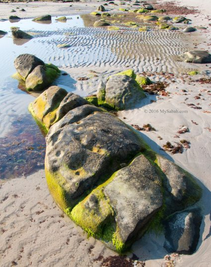 Rock formation along the beach