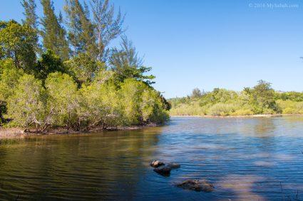 Mangrove river behind Bawang Jamal Beach