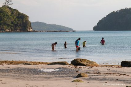 Local children beachcombing for shells and seaweed