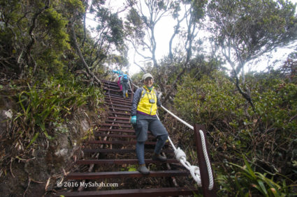 Staircase on Kota Belud Trail