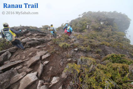 Nature path of Ranau Trail