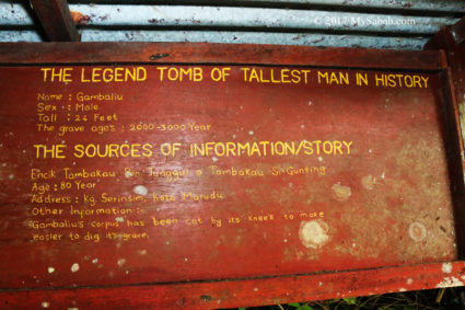 signage: Gambaliu is the tallest man