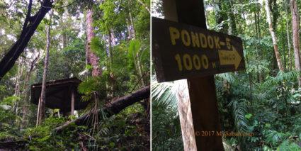 Gazebo No.4: Pondok Menggilan, 1,000 Meters to gazebo No.5