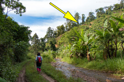 Going to the foothill. The yellow arrow points at the start of Bukit Lugas