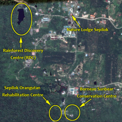Location of Nature Lodge Sepilok and its surrounding attractions