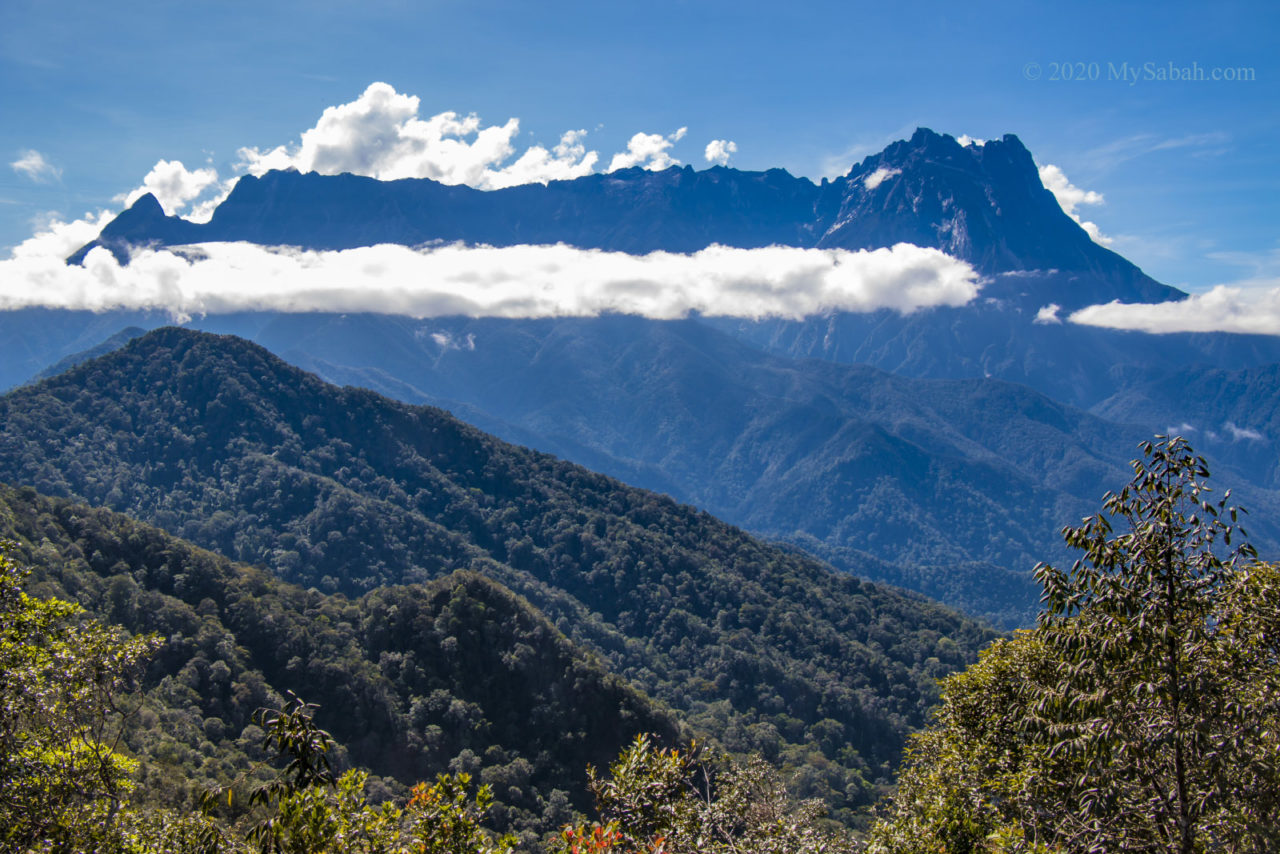 Close-up view of Mount Kinabalu on Mount Nopungguk